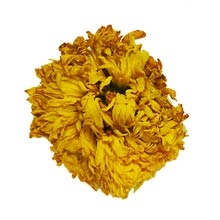 Organic Royal Chrysanthemum